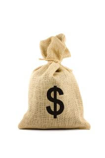Bag with dollar sign